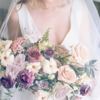 Flower Kamelia -