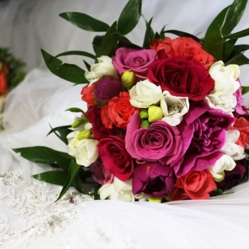 Flower Kamelia - oferta